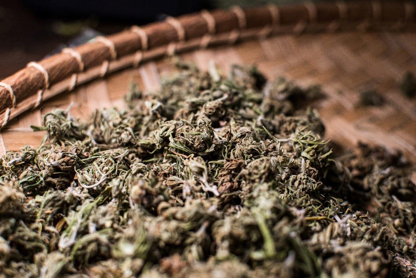Dried Cannabis