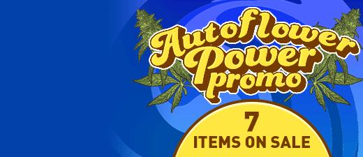 Autoflower power promo - 7 items on sale - offer valid until June 25th - SHOP NOW
