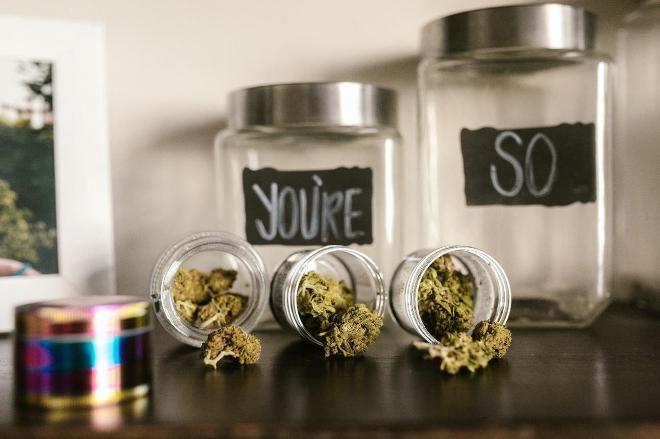 Buds in Jar