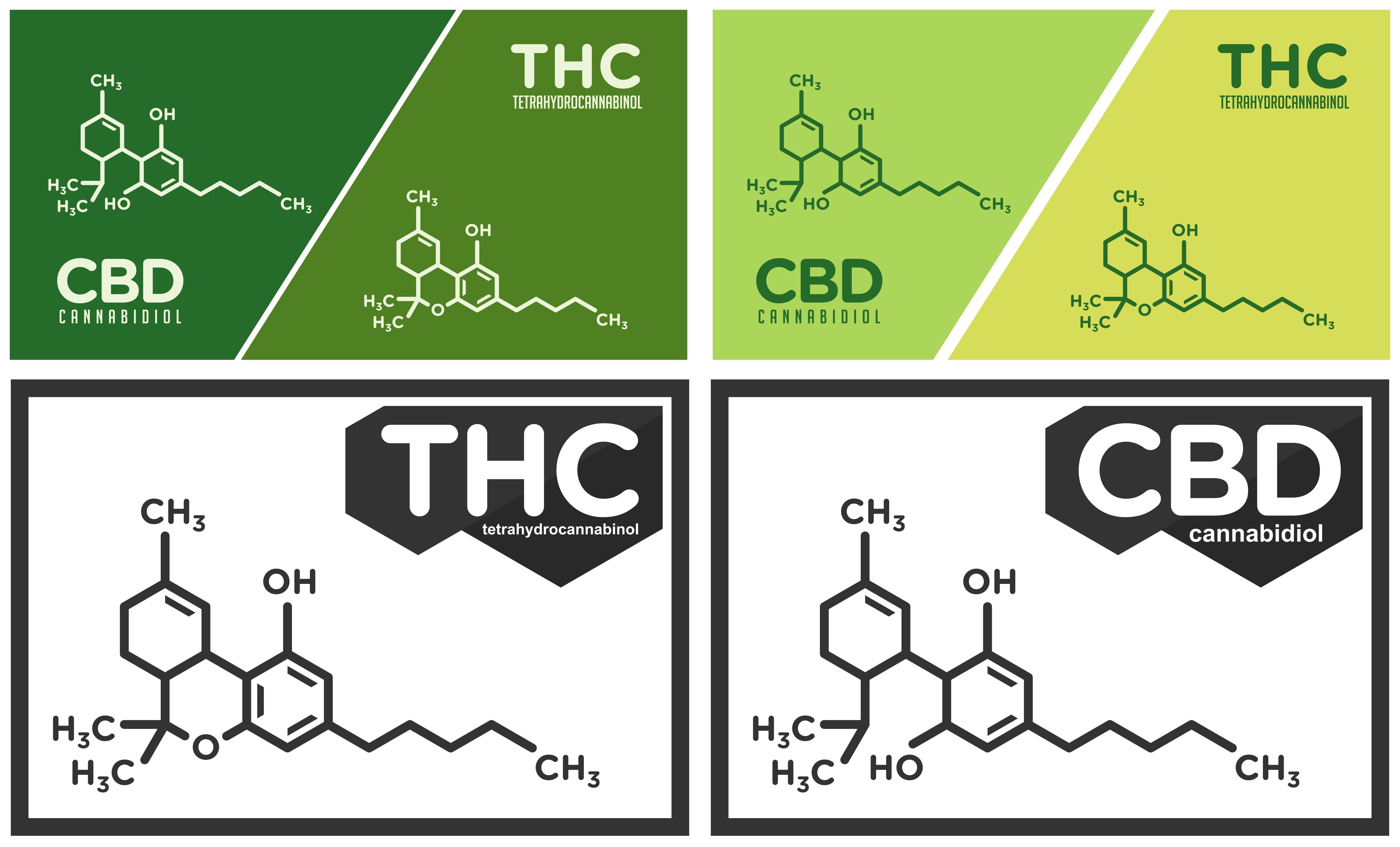 thc-versus-cbd