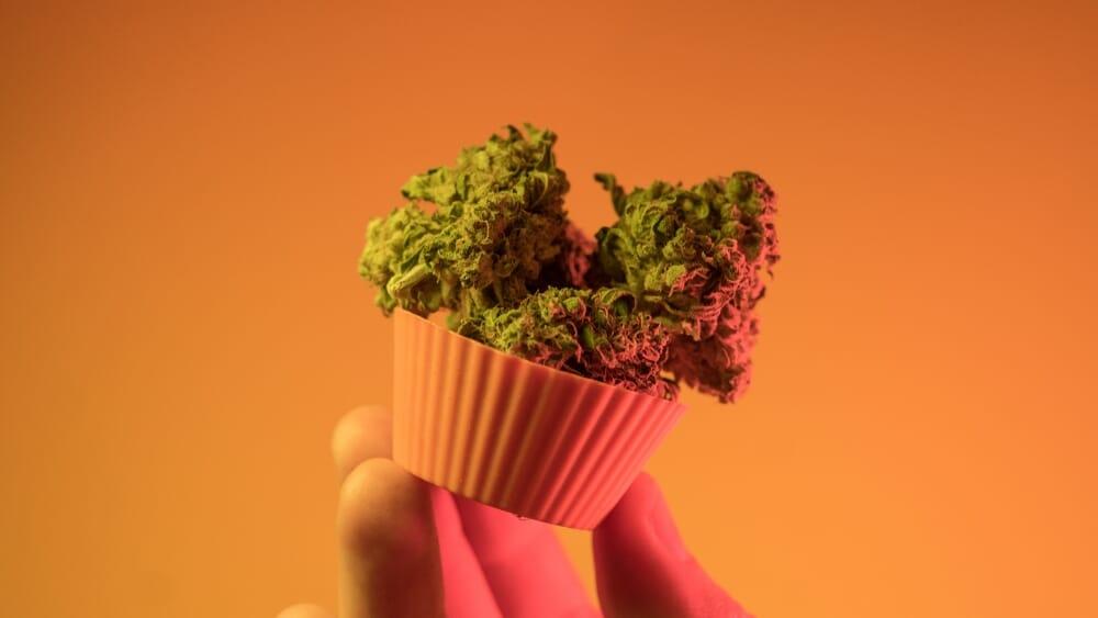 marijuana-cup-cake