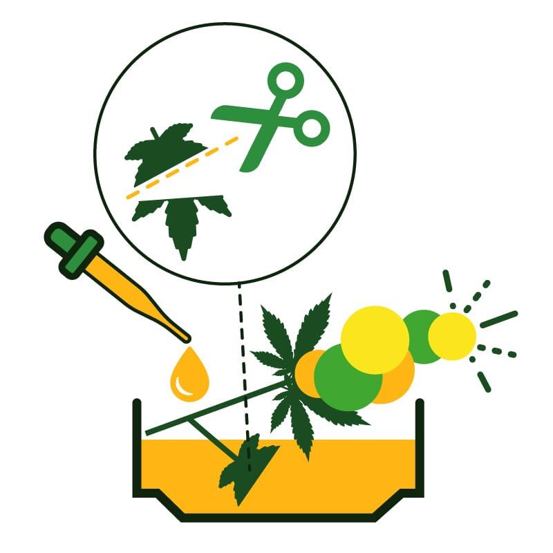 flavoring weed during